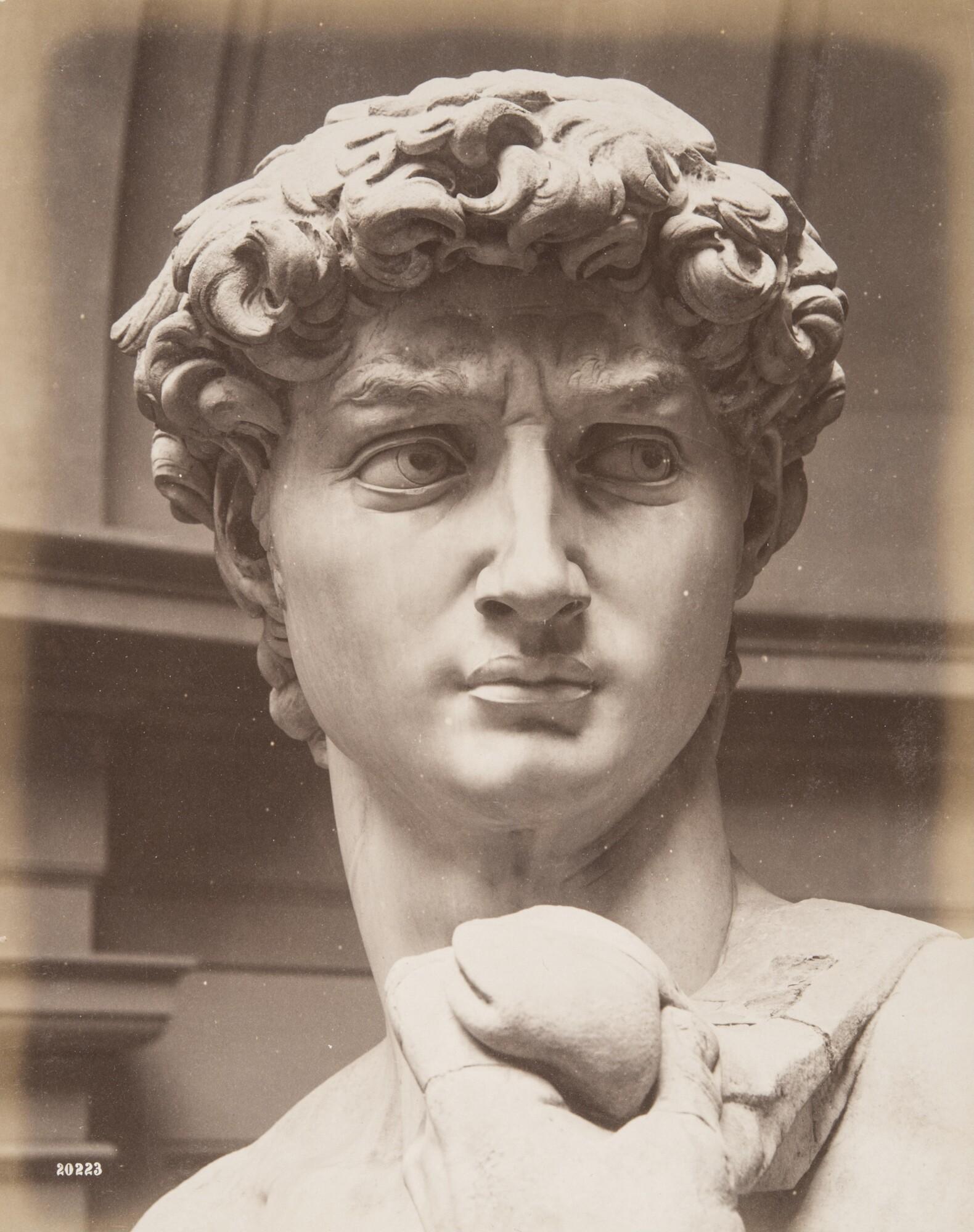 Алинари.    Микеланджело«Давид», 1860‑е   Альбуминовый отпечаток