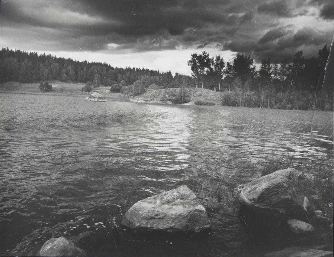 С. М. Тимофеева.  Холодный ветер 1997