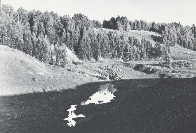 С. М. Тимофеева.  Пейзаж 1979
