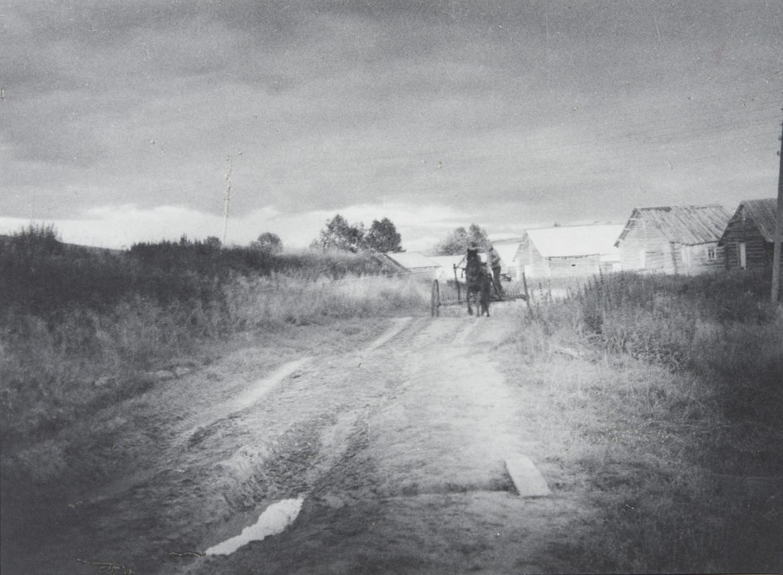 С. М. Тимофеева