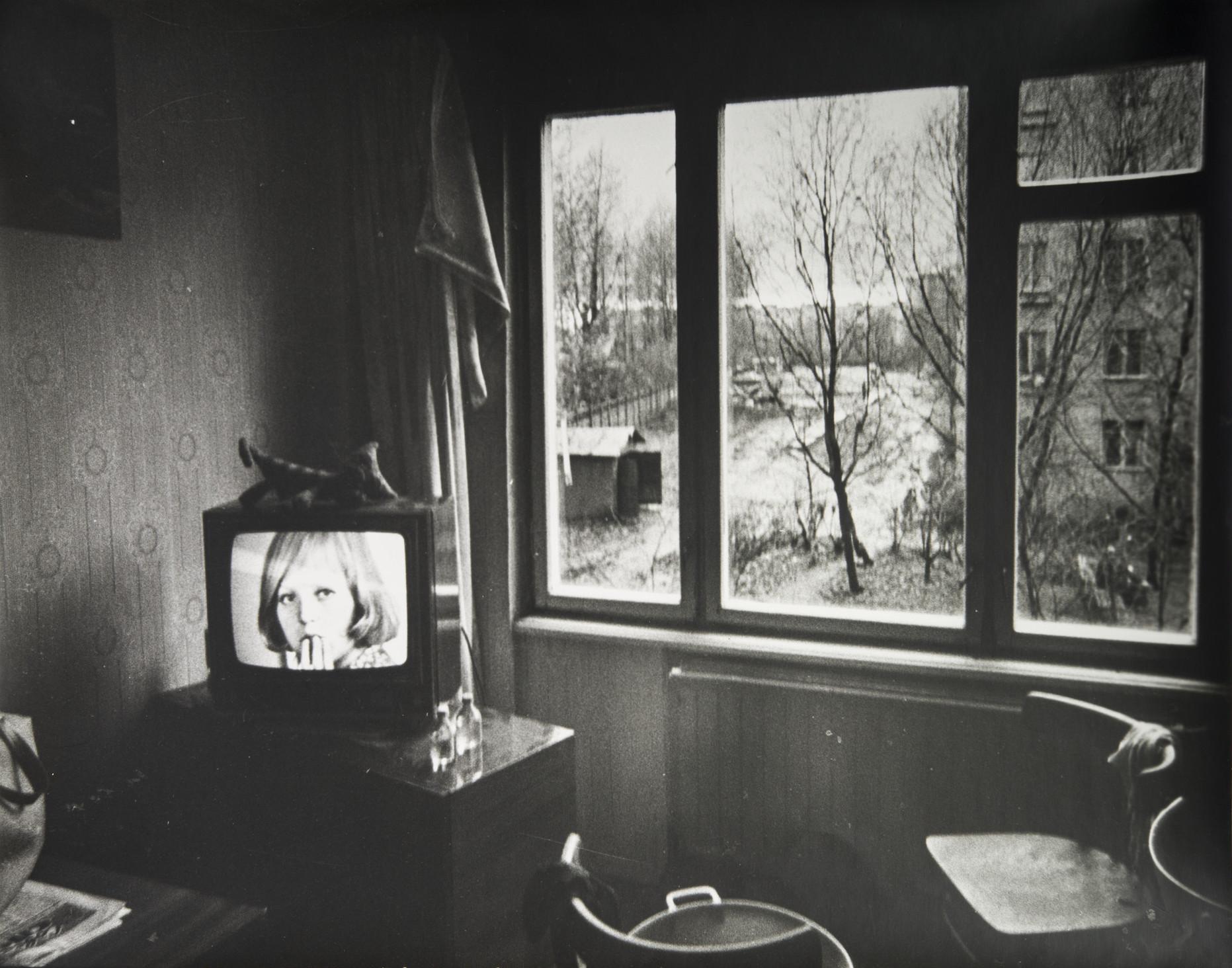 Б. Г. Михалевкин.  Два окна в мир