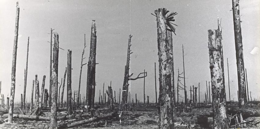 Б. П. Кудояров.    Арбузово   1943