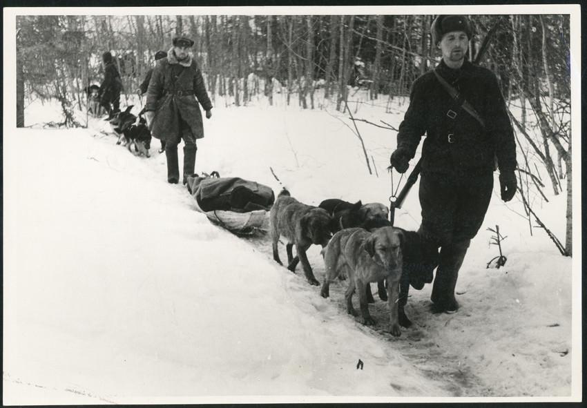 Б. П. Кудояров.    Вывоз раненых с передовой   1943
