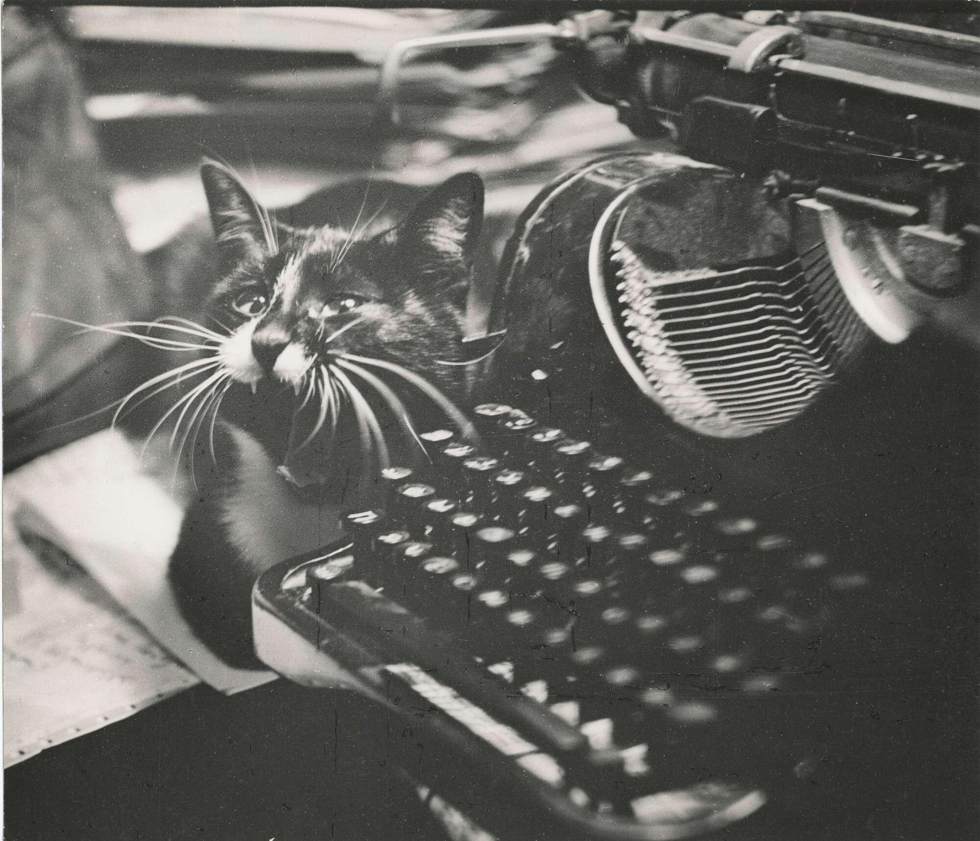 """Борис Михалевкин.    """"Секретарь-машинистка""""   1976"""