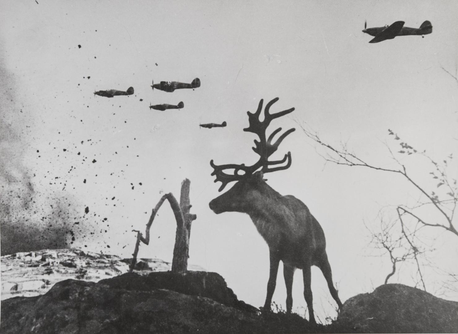 Е. А. Халдей.    На Мурманском направлении   Заполярье, СССР, 1941