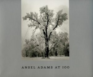 Ansel Adams at 100.